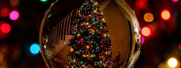 8 recomendaciones para fotografiar tu árbol de Navidad