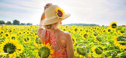 Crea el paisaje de verano perfecto
